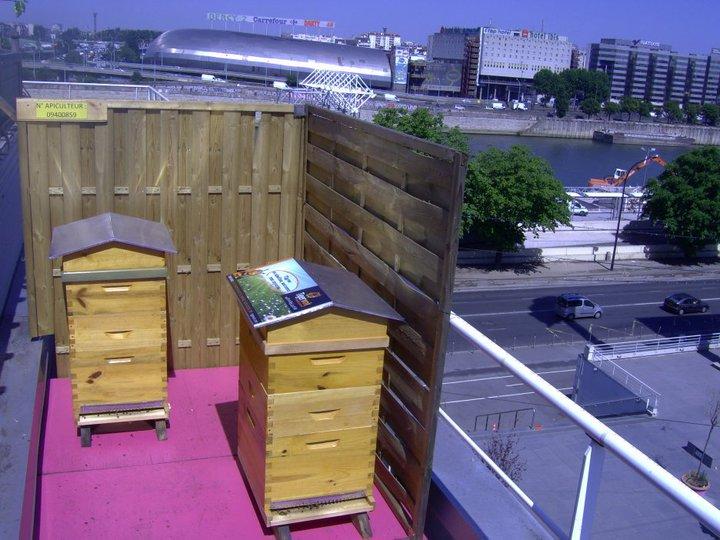 installation de reglementation ruche en ville
