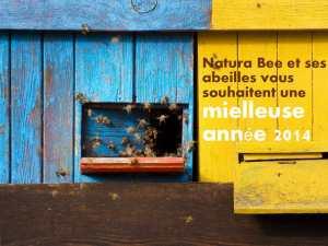 carte voeux 2014-2