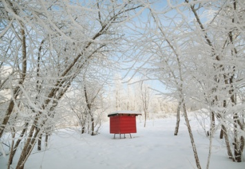 Red beehive in a winter.